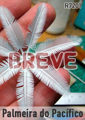 breve-palmeira
